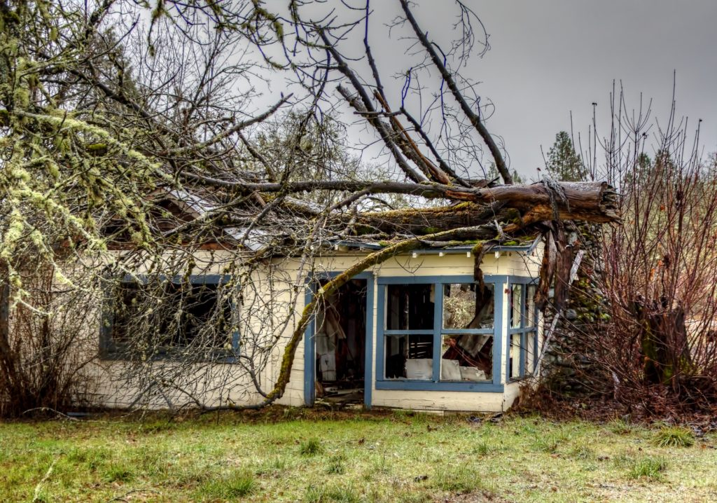 storm damage restoration, storm damage cleanup, storm board up, storm tree damage, storm damage cleanup