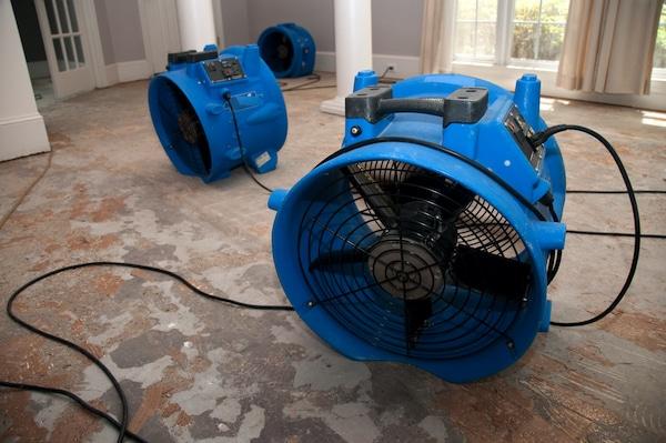 water damage lahaina hi, water damage restoration lahaina, lahaina restoration services, lahaina water damage restoration